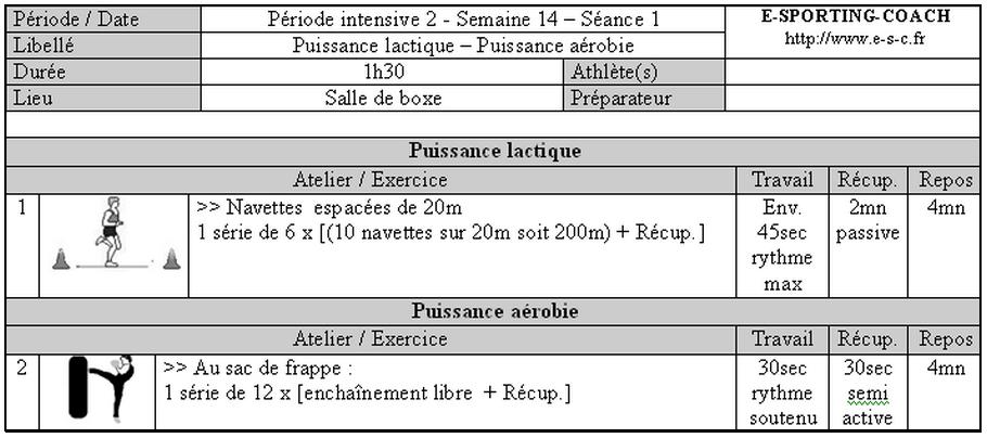 Assez La préparation physique en sports de combat de percussion EN13