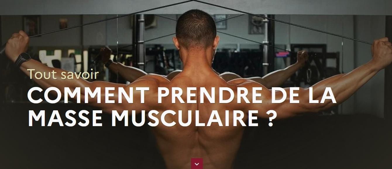 Tout savoir : comment prendre de la masse musculaire ?